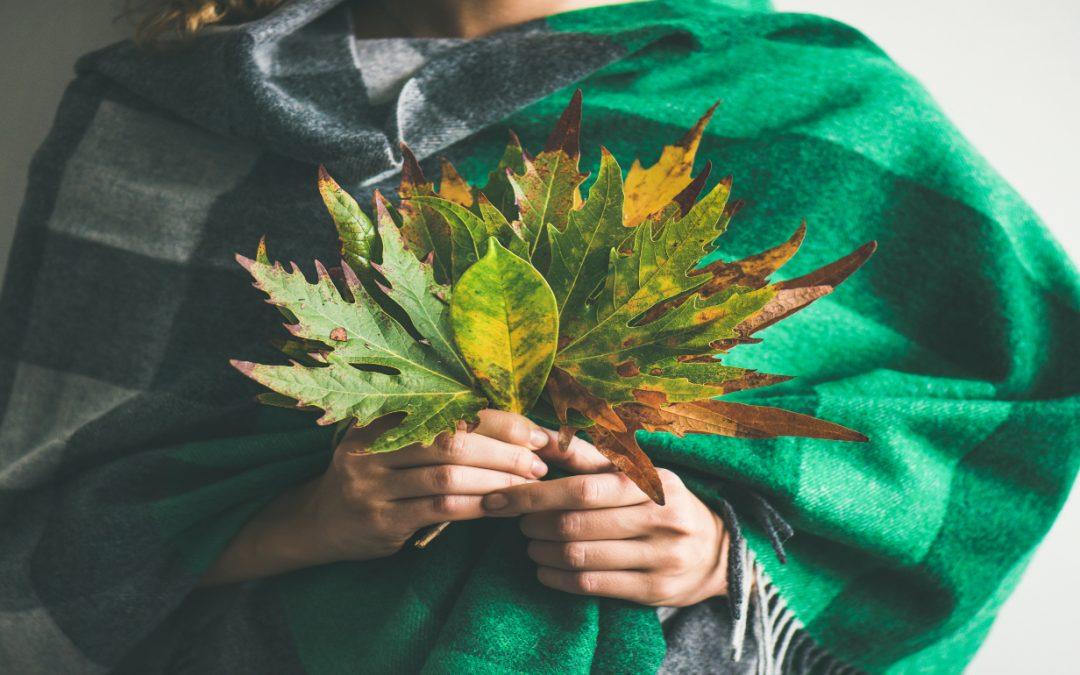Todo acerca del uso terapéutico y espiritual de la ayahuasca y los psicoactivos